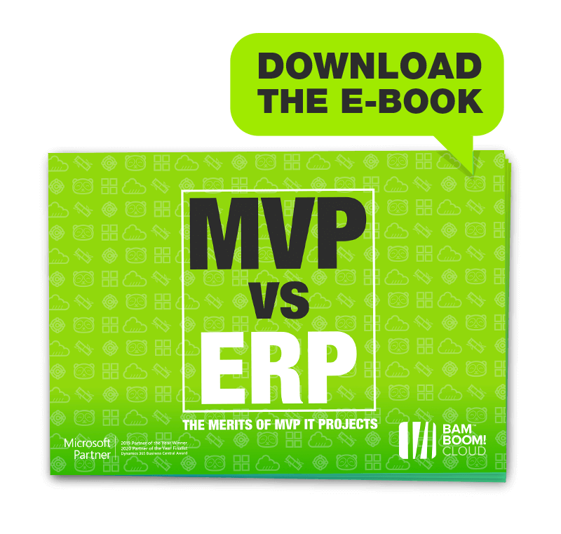 Learn how to switch ERP systems quickly and cheaply with an MVP build from Bam Boom Cloud
